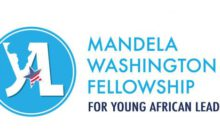 USA Leadership Programme - Mandela Washington Fellowship Opportunity