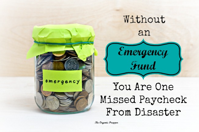 Emergency-Fund-You-Are-One-Missed-Paycheck-From-Disaster